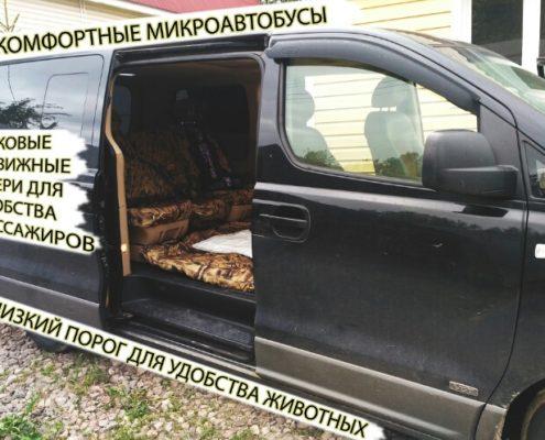 Минивены ЗооТакси